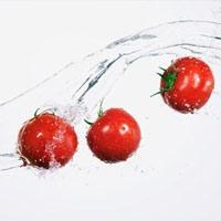 Chợ Tân Bình 15-9: Cà chua giá hạ