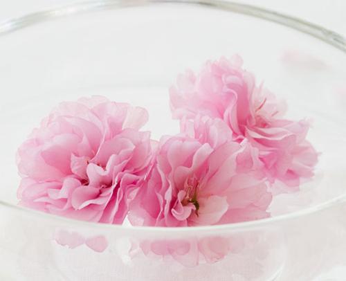 Da mịn với hai loại nước hoa hồng tự chế - 1