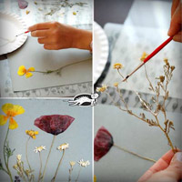 Tranh đẹp mê ly từ xác hoa