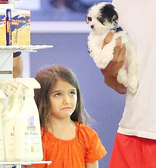 Suri mếu máo đòi mua thú cưng - 1