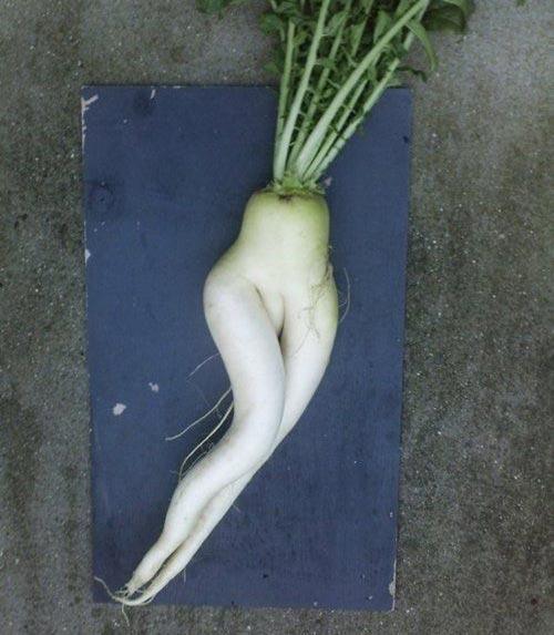 mon an 'sexy' ngon kho cuong - 5