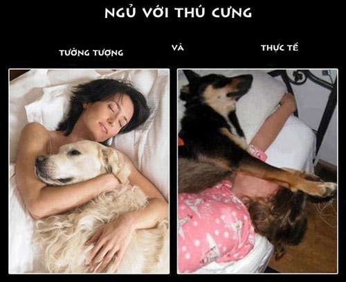 cuoi 'no bung' voi shoot anh hai kho do - 3