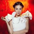 Thời trang - Ngô Thanh Vân sẽ làm host Top Model mùa 4?