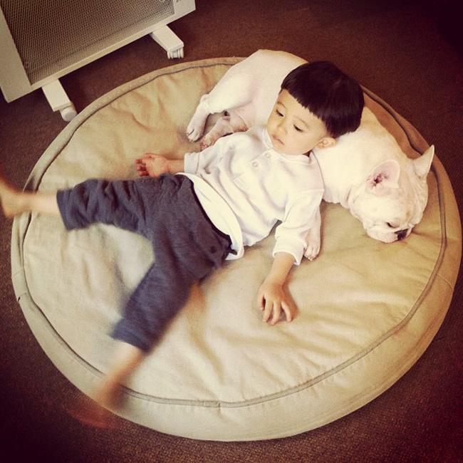 Thời gian gần đây, những bức hình của một cậu bé Nhật Bản và chú chó Bulldog được cộng đồng mạng thích thú và 'share' với tốc độ chóng mặt.