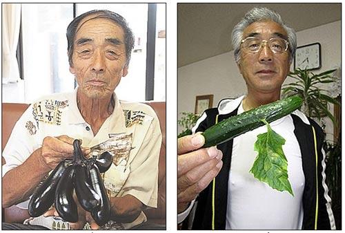 rau cu dot bien do tham hoa hat nhan fukushima - 5