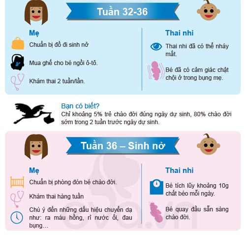 chi 5% tre chao doi dung ngay du sinh - 6