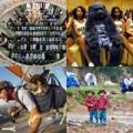 Tin tức - Những hình ảnh ấn tượng của thế giới trong tuần qua