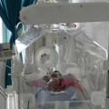 Tin tức - Trẻ suýt bị chôn sống: Bệnh viện giải trình