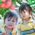 Làm mẹ - Siêu mẫu nhí: Bé Xu và chùm vải