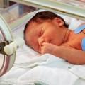 Làm mẹ - Dạy trẻ sơ sinh: mỗi tháng một 'chiêu'