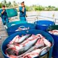 Mua sắm - Giá cả - Đến 2020: Xuất khẩu thủy sản khoảng 11 tỷ USD