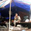 """Tin tức - Đại gia đình """"người rừng"""" ở tạm lều 10m2"""