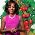 Nhà đẹp - Học phu nhân Mỹ trồng cà chua tuyệt ngon