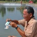 Mua sắm - Giá cả - TQ tận thu tôm nguyên liệu, DN Việt lao đao