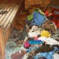 Tin tức - Vụ nổ gas chết 3 mẹ con: Có thể do tự sát