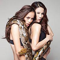 Diệp Lâm Anh rủ Thu Hiền cùng bán nude với trăn