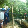 Tin tức - Cắt điện toàn tỉnh Quảng Bình, Quảng Trị do bão