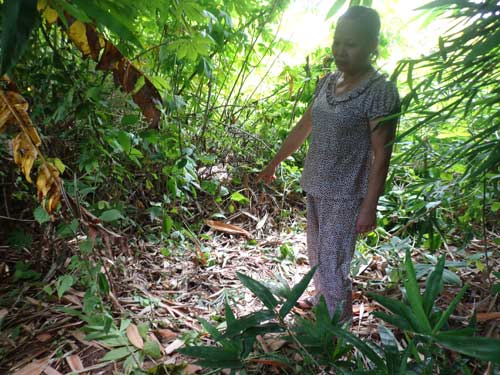 be gai so sinh bi bo roi, than the bam day doi - 1