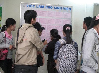 "nhung chu chim non va ""canh bac"" dai hoc - 2"
