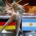 Tin tức - Bạch tuộc dự đoán Đức vô địch World Cup 2014