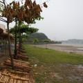 Quảng Ninh: Bão Thần Sấm gây mưa lớn, 3 người nhập viện