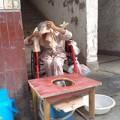 Tin tức - Xót xa cụ bà 93 tuổi bị các con đuổi khỏi nhà