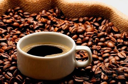 meo giam mo bung bang cafe - 2