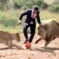Clip Eva - Đá bóng cùng với đàn sư tử giữa Châu Phi