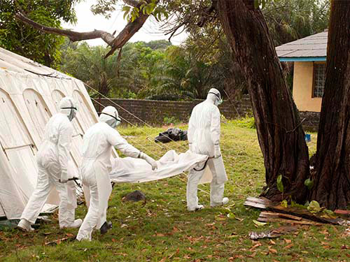 bung phat dich ebola, 729 nguoi tu vong o tay phi - 1
