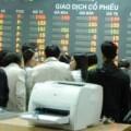 """Mua sắm - Giá cả - Cổ phiếu """"nhà giàu"""" lép vế trước cổ phiếu nhỏ"""