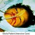 Tin tức - Vì sao Ebola là dịch bệnh nguy hiểm nhất hiện nay?