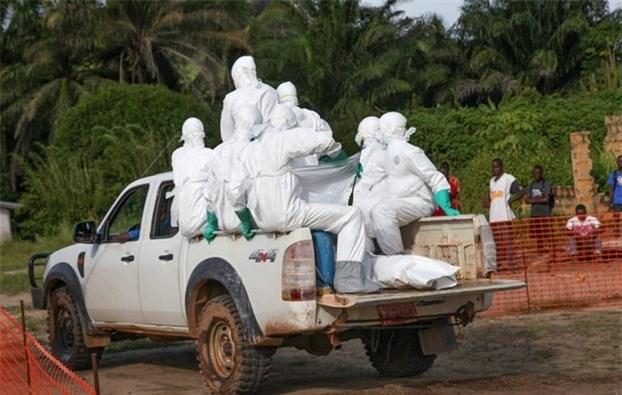 bo y te: ebola hoan toan co the lay lan vao viet nam - 1