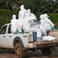 Tin tức - Bộ Y tế: Ebola hoàn toàn có thể lây lan vào Việt Nam