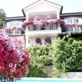 Nhà đẹp - Những loài hoa thích hợp trồng trong giỏ treo