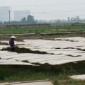 Mua sắm - Giá cả - Vì sao mì, miến bán ngoài chợ có giá rẻ?