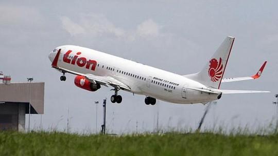 Máy bay phải hạ cánh khẩn cấp vì phi công đột quỵ-1