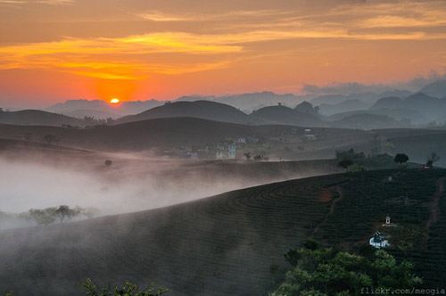 Vẻ đẹp mê hoặc của Mộc Châu trong sương sớm - 1