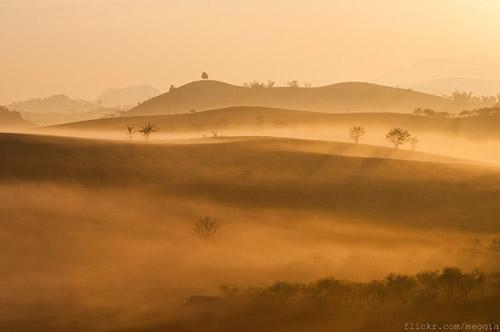 Vẻ đẹp mê hoặc của Mộc Châu trong sương sớm - 4