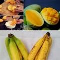 Làm mẹ - Chiêu phân biệt hoa quả chín ép cho con