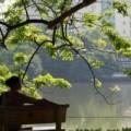 Tin tức - Cuối tuần, Hà Nội nắng nhẹ 33 độ C