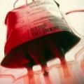 Tin tức - WHO khuyên dùng máu của người sống sót để trị Ebola