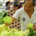 Sức khỏe - Các loại thực phẩm sát khuẩn