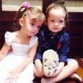 Làng sao - Cặp song sinh nhà Hồng Nhung cực yêu chụp ảnh cùng tê giác