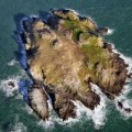 Đi đâu - Xem gì - Hòn đảo tràn ngập... phân chim ở Châu Âu