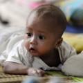 Tin tức - Thêm nghi vấn một cháu bé bị đánh tráo ở chùa Bồ Đề
