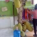 Đi đâu - Xem gì - Việt Nam: Cây mít ra quả giữa cửa hàng thời trang