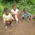 Tin tức - Số phận hàng trăm trẻ em mồ côi vì virus Ebola