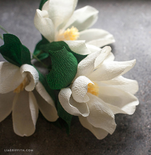 nha sang chanh bay hoa moc lan giay - 9