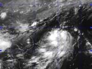 Tin trong nước - Bão LINFA giật cấp 10-11 đang tiến gần biển Đông