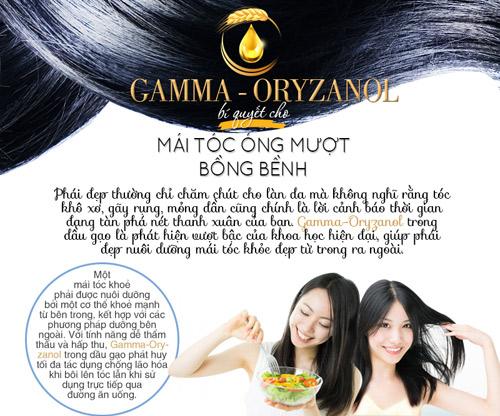 gamma-oryzanol – bi quyet cho mai toc ong muot bong benh - 1